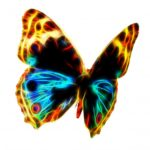 fractal-wire-flame-butterfly